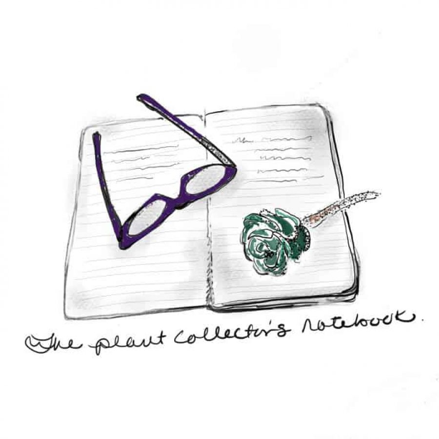 The_plant_collector_s_notebook